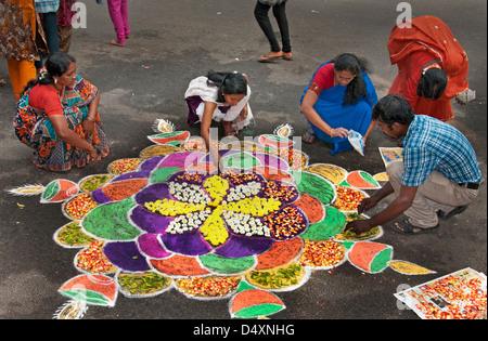 Chennai woman is making an Rangoli design with Flowers in an Indian street  during the hindu festival of Sankranthi - Stock Photo