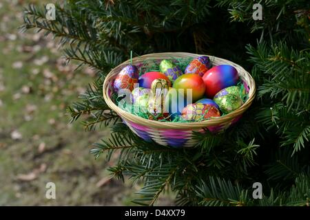 A hidden easter surprise in the garden. Photo: Frank May - Stock Photo