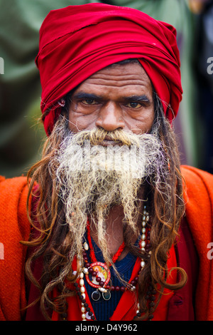 Portrait of a Sadhu with a huge beard at the Kumbh Meal festival 2013 at Allahabad - Stock Photo