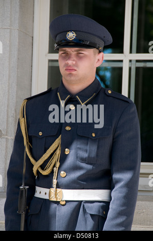 A sentry at the main entrance to the President of of the Republic of Estonia's official residence in Tallinn,Estonia - Stock Photo