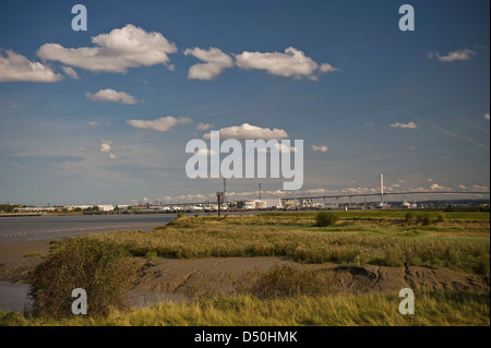 The Queen Elizabeth II Bridge carrying the M25 over the River Thames viewed from the Dartford Marshes, Kent, UK - Stock Photo