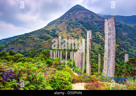 Steles containing centuries old sutra along Wisdom path at the hills of Ngong Ping on Lantau Island, Hong Kong, - Stock Photo