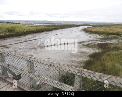 TAMAR ISLAND WETLANDS RESERVE on River Tamar, northern Tasmania at low tide. Photo Tony Gale - Stock Photo