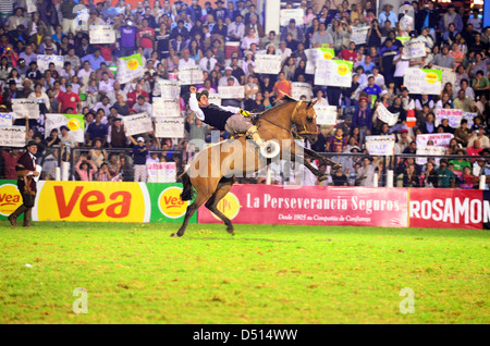 Jesus Maria, Argentina, rider tries on a bucking horse keeping - Stock Photo