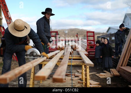 Dec 05, 2012 - Bergholz, Ohio, U.S. - Children watch as their fathers work on an addition to the barn the Mullet - Stock Photo