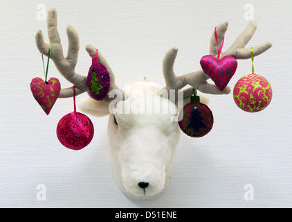 Colourful fabric-made christmas decoration from Gisela Graham hangs at the horns of a pet elk's head in Boennigenstedt, - Stock Photo