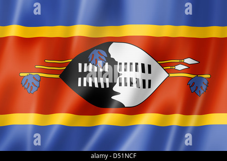 Swaziland flag, three dimensional render, satin texture - Stock Photo