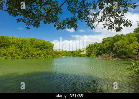 View across the Nosara River mouth towards the Biological Reserve; Nosara, Nicoya Peninsula, Guanacaste Province, - Stock Photo