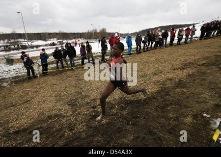 Bydgoszcz, Poland 24th, March 2013 IAAF World Cross Country Chamiponships. Junior Race Woman. - Stock Photo