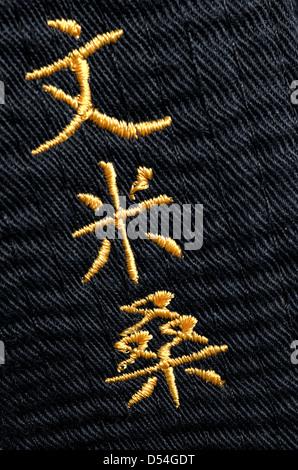 Karate Black Belt - Stock Photo