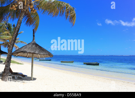 Palm beach with boat on the ocean in Mauritius island - Stock Photo