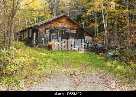 Old tar paper shack in the woods. - Stock Photo
