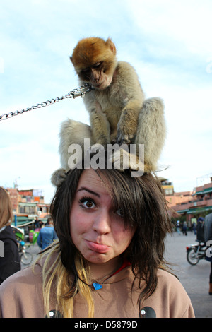 In the bustling Jemaa el-Fna, located in the historic medina of Marrakech, a girl has fun with a monkey on your - Stock Photo