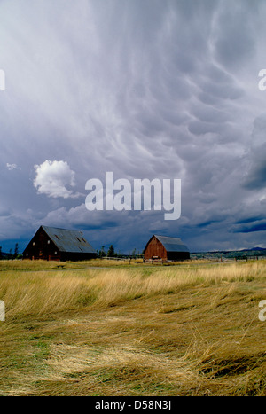 Storm clouds over barns at Harriman State Park in eastern Idaho, USA - Stock Photo
