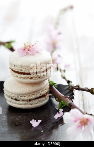 French macaroons decorated with pink cherry flowers - Stock Photo