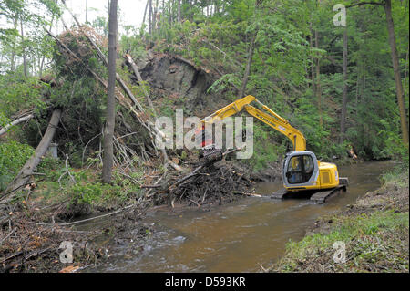 Forest workers remove the storm damages caused by a tornado on Pentecost Monday near Radeberg, Germany, 10 June - Stock Photo
