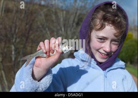 Child fishing on Town Parks lake near Paignton Devon catches a roach or rudd - Stock Photo