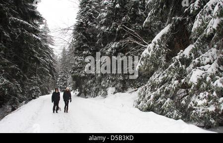 Durch eine winterliche Landschaft im Nationalpark Harz bei Schierke laufen am Samstag (02.01.2010) zwei Wanderer. - Stock Photo