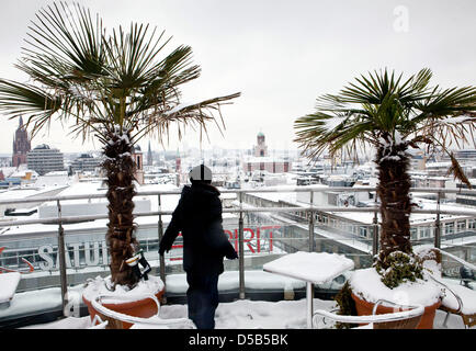 A tourist stands on the observation platform of the Zeil-Galery next to snow covered pot palm trees and views the - Stock Photo