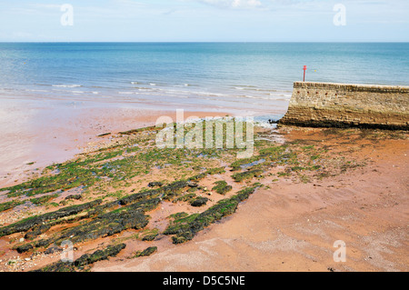 Low tide exposes the rocks on the beach at Dawlish in Devon - Stock Photo