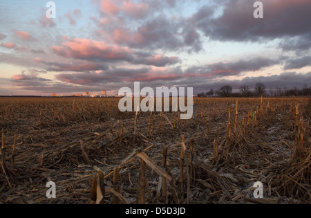 Ludwigsfelde, Germany, Abenddaemmerung over a fallow cornfield - Stock Photo