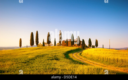 Tuscan Landscape, farm house and cypress trees in the golden meadow - Stock Photo