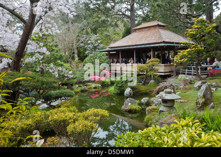 Makoto Hagiwara, designed the Japanese Tea Garden in Golden Gate Park, where he maintained it as a live-in gardener. - Stock Photo