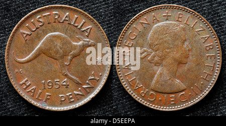 Half penny coin, Kangaroo, Australia, 1954 - Stock Photo