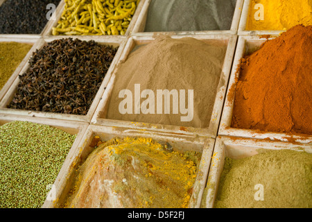 Colorful aromatic ingredients. Dry spices and herbs. - Stock Photo