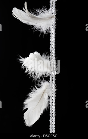 White feathers hanging against dark black background - Stock Photo