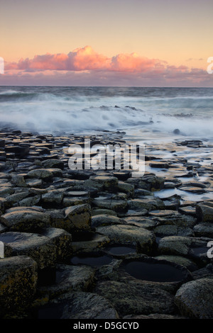 Sunrise tones at the famous Giant's Causeway - on the Antrim coast of Northern Ireland - UNESCO World Heritage Site. - Stock Photo