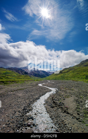 Snow melt from the Alaska Range feeds a small stream, Denali National Park, Alaska, USA - Stock Photo