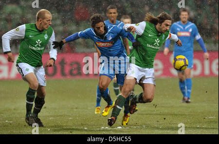 Bremen's Petri Pasanen (L) and Torsten Frings (R) fight for the ball with Hoffenheim's Carlos Eduardo during the - Stock Photo