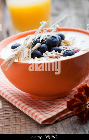 Yogurt with fresh blueberries and fruit muesli - Stock Photo