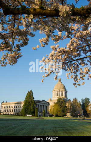 Washington State Capitol building in Olympia. - Stock Photo