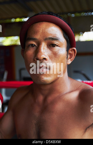 Portrait of mid adult male boxer - Stock Photo