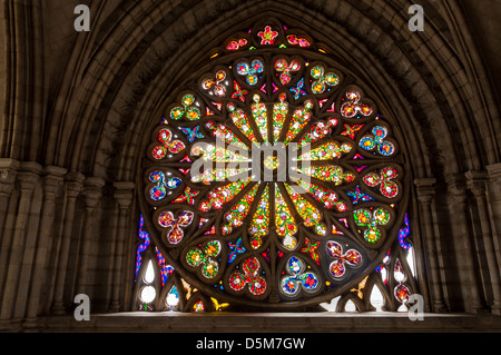 Beautiful stained glass inside the basilica of Quito, Ecuador - Stock Photo