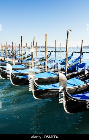 Gondolas moored by Saint Mark Square (Piazza San Marco).