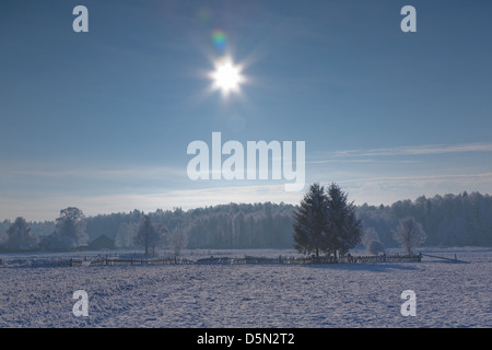 Winter landscape of small village and forest against sun - Stock Photo