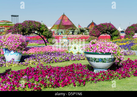 Miracle Garden in Dubai, Opened in March 2013 and claimed to be World's largest flower garden; United Arab Emirates - Stock Photo
