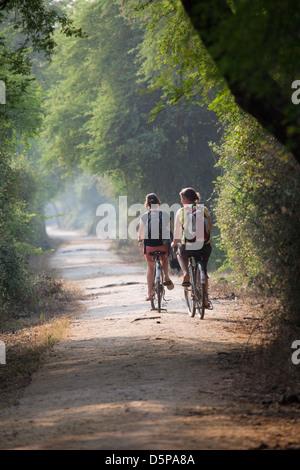 Keoladeo National Park, India - Stock Photo