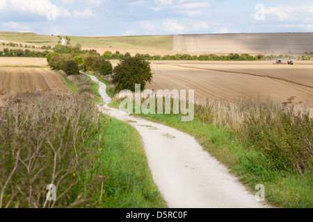 The Ridgeway National Trail leading easterly to Uffington Fort Hill in Oxfordshire UK passes through harvested wheat - Stock Photo