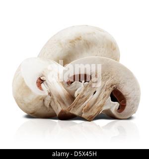 Champignon mushrooms on white backround. Clipping Path - Stock Photo
