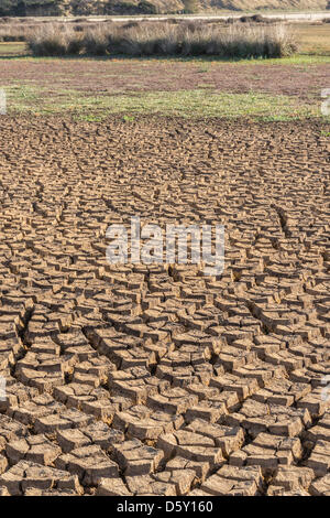 Lake Ellesmere, near Christchurch, New Zealand. 10th April 2013. Increasing areas of lakebed are exposed and drying - Stock Photo