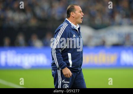 Schalke's head coach Huub Stevens shouts during the Bundesliga soccer match between Schalke 04 and VfL Wolfsburg - Stock Photo