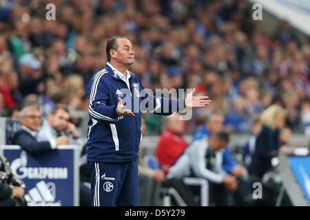 Schalke's head coach Huub Stevens gestures during the Bundesliga soccer match between Schalke 04 and VfL Wolfsburg - Stock Photo