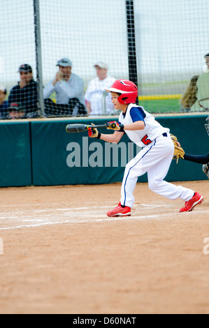 Little league baseball boy about to bunt the ball. - Stock Photo