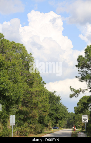 cumulus clouds developing into cumulonimbus clouds over a suburban city street with trees and a road - Stock Photo