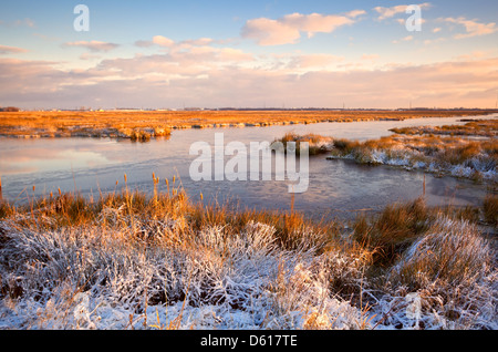 sunrise over swamp in winter - Stock Photo