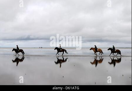 FILE - An archive picture dated 13 August 2011 shows a group of riders galloping along the beach of Sankt Peter - Stock Photo